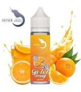 Hayvan Juice - Ga-ZoZ Orange  Aroma
